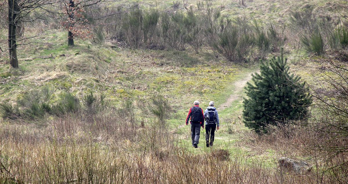Wandern auf dem Hermannsweg