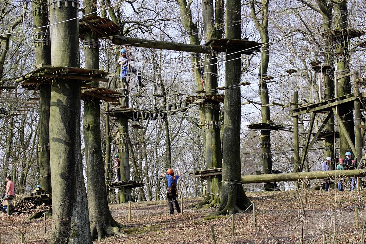 high ropes course, teutoburg forest