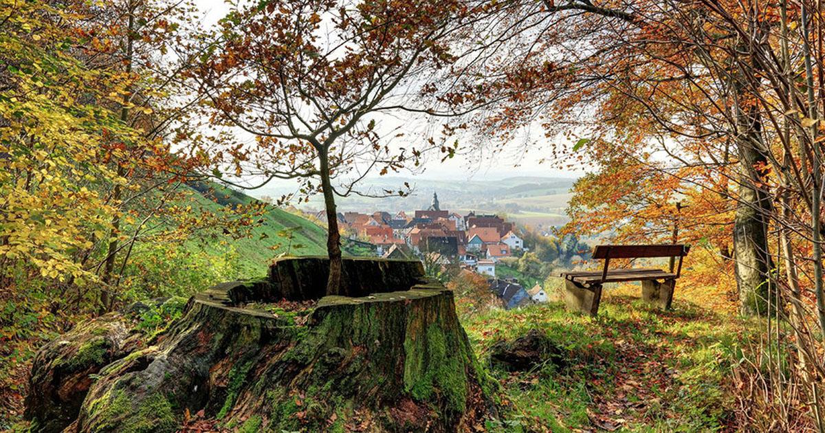Aussichtspunkt im Herbstwald
